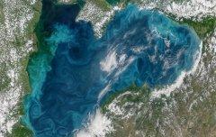 В Черном море изменился цвет воды