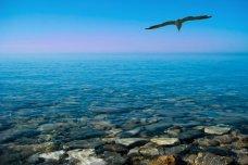 Международный день Черного моря: история