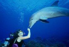 Підводні розваги