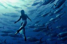 Користь плавання