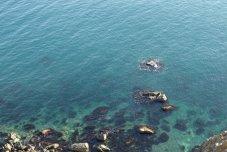 Чорне море як джерело енергії майбутнього